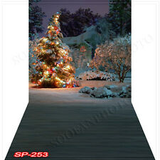 Christmas 10'x20' Computer-painted(CP) Scenic Vinyl Background Backdrop SP253B88