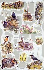 Chromo Le Suh Découpis Nids d'oiseaux 1775 Embossed Illustrations Bird's nest