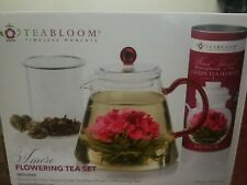 New listing Teabloom Amore Glass Teapot Gift Set – Stovetop Safe Glass Teapot with Removab