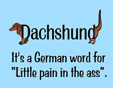 Metal Refrigerator Magnet Dachshund German Word Pain In Ass Dog Turquoise Humor