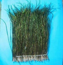 """Peacock Herl..XLARGE pack..4"""" wide strung herl..LOTS OF HERL..COMBINE SHIPPING"""