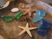 Seaglass and Mini Starfish Collection (12 PC) - Natural Starfish - Sea Glass