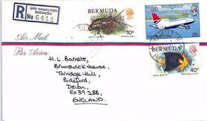 BR213 1981 BERMUDA Hamilton REGISTERED Commercial Airmail Cover FISH AEROPLANE