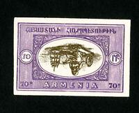 Armenia Stamps XF Unused 1920 Inverted Center Error Imperforate