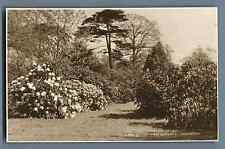 Judges, UK, London, Kew Gardens  Vintage silver print.  Postcard Picture by Judg