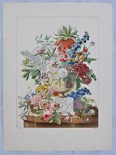 Antoine Chazal 1793-1854  Lithographie par Mourlot Bouquet de Fleurs