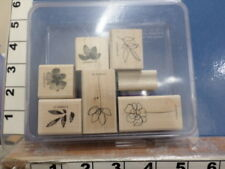 Botanical blooms STAMPIN UP RUBBER STAMP 5C