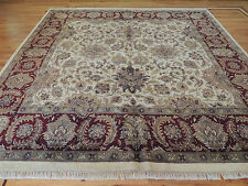 10x10 Lovely Oriental Agra Square Area Rug India Red Ivory hand-knotted wool