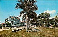 Vintage Chrome Postcard; Queen Elizabeth Walk, Singapore, Palm Trees, Unposted
