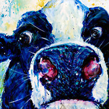"""'Sir Prized Cow' -12x12"""" art print on 80lb paper - black calf with white face"""