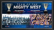 WESTERN BULLDOGS 2016 AFL PREMIERS FRAMED LIMITED EDITION HALF CUP DISPLAY