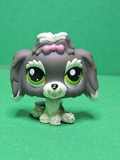 #1523 chien Shih tzu grey Dog special edition LPS Littlest Pet Shop Figure