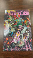 Teenage Mutant Ninja Turtles #75 Ri Cover IDW