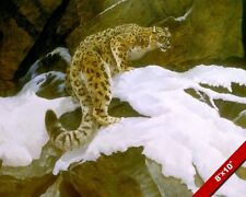 LEOPARD CLIMING IN SNOW WILD ANIMAL PAINTING WILDERNESS ART REAL CANVAS PRINT