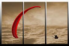 DEKOART BILDER WANDBILD GLEITSCHIRM  LEINWAND BILD 3 x 80cm x 40cm