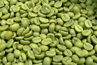 Costa Rican Coffee Beans Tarrazu Green Un - Roasted Whole Beans 5 Pounds