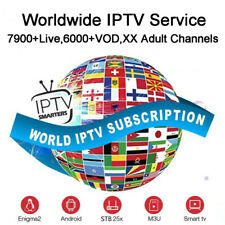 12 months ptv for smart tv box android and mag box MAG STB M3U 7900 Channels USA