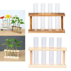 lecimo Glass Planter Propagation Station Test Tube Vase Flower Pots in  sdfs