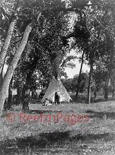 New Art Print of c.1910 Edward Curtis Photo Tepee Cheyenne Indians Montana 11X17