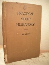 PRACTICAL SHEEP HUSBANDRY Burns 1919 HC Producing Feeding Fattening Lambs Market