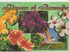 Flowers of Bermuda 1998 Postcard 494a
