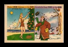 DR JIM STAMPS US PICK ORANGES IN SUN SNOWBALLS ON RUN TOPICAL COMIC POSTCARD