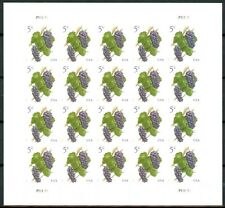 Pinot Noir Grapes Complete Sheet 20 Self-Adhesive MNH Stamps Scott's 5177 CRISP!