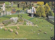 Buckinghamshire Postcard - The Zoological Garden, Bekonscot Model Village   RR23
