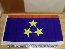 Fahnen Flagge Vojvodina Sonderposten - 90 x 150 cm