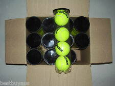 NEW!!! 48 PRACTICE COACHING TRAINING TENNIS BALLS (Cans of 4)