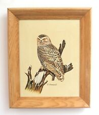 """Vintage Wood Framed Owl Oil Painting Signed C Carson 10"""" x 12"""" Ready to Hang"""