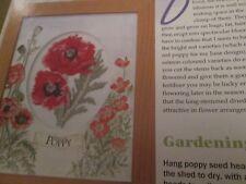"""Gardener's Diary-Juin"" JULIA DE MEDEIROS cross stitch chart (uniquement)"