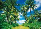 Foto Mural decorativo Isla Tropical Para Pared 366x254cm Verde Azul Selva -