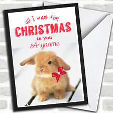 All I Want Is You lapin Noël personnalisées Carte