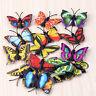 4X Butterfly Miniature-Fairy Garden Ornament Plant Pot Craft Dollhouse Decor DIY