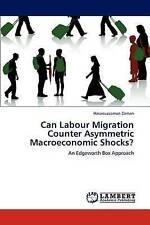 Can Labour Migration Counter Asymmetric Macroeconomic Shocks?: An Edgeworth Box