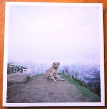 SIGNED - ALEC SOTH - DOG DAYS BOGOTA - 2007 1ST EDITION & 1ST PRINTING - FINE