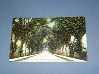 VINTAGE 1908 ST AGNES & RURAL CEMETERIES ALBANY    NEW YORK   POSTCARD