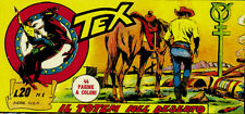Tex 17° serie Gila ristampa completa a striscia di 12 albi