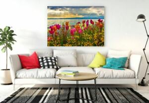Tulip Flowers Amazing Framed Canvas Ready To hang Wall Art Home Decor Painting