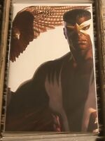 CAPTAIN AMERICA #24 SAM WILSON FALCON ROSS TIMELESS VARIANT 2020 winter soldier