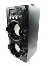 Altavoz Portátil Karaoke Con Radio FM y Batería Recargable modelo 9956