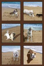 Arena Garabatos Perros paneles Colchas de retazos de tela 15 paneles Elizabeth's Studio