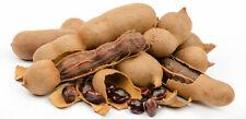 Organic Pure Organic fresh  dietary Tamarind With Seeds free shipping 100g