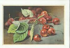137916 stupenda cartolina artistica frutta di s. bonelli
