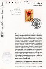 FDC / PREMIER JOUR / TULIPA LUTEA PARIS 2000