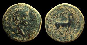 GERMANICUS AE15 Apameia/Phrygia (Stag) Magistrate Caius Julius Callicles