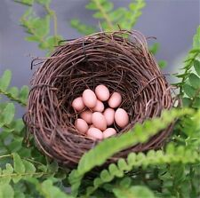 10PCS Twig Bird Nest Small Speckled Eggs Nature Craft Special Home Decoration
