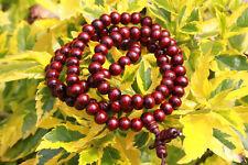 Sandalwood 6mm Prayer 108 Beads Mala Bless Buddhism Buddhist Bracelet wholesale
