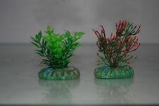 Aquarium Petit NANO plantes x 2 vert & vert/rouge environ 4 cm